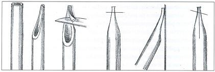 Как сделать перо для письма из гусиного пера